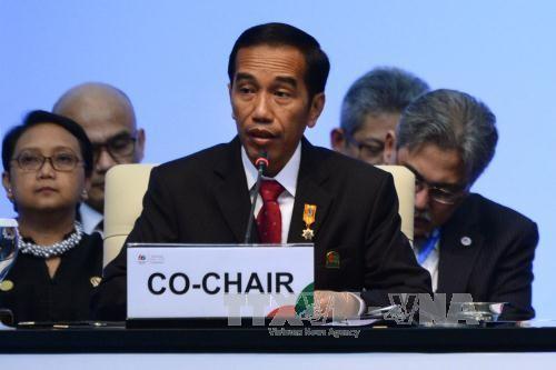 Indonesia mendorong kerjasama dengan berbagai negara dalam kerangka kerjasama Asia-Afrika - ảnh 1