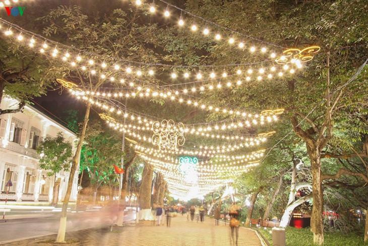 Kota Hanoi merayakan Tahun Baru 2016 dalam suasana meriah - ảnh 4