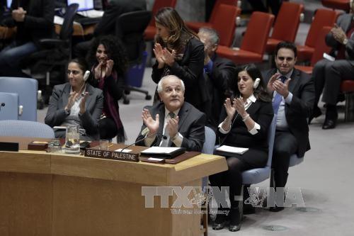 PBB berseru kepada Israel supaya menghentikan pendudukan terhadap Palestina  - ảnh 1