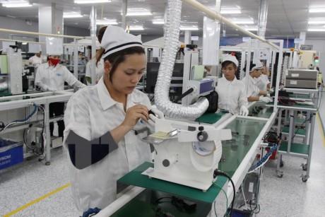 Vietnam dan Republik Korea mendorong kerjasama di bidang permesinan dan elektronik - ảnh 1