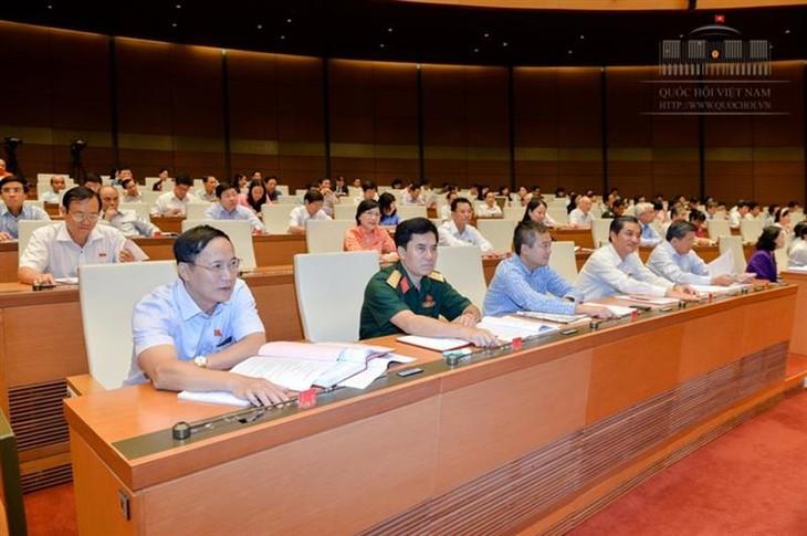 MN Vietnam mengesahkan Kitab Undang-Undang  Hukum Pidana (amandemen) - ảnh 1