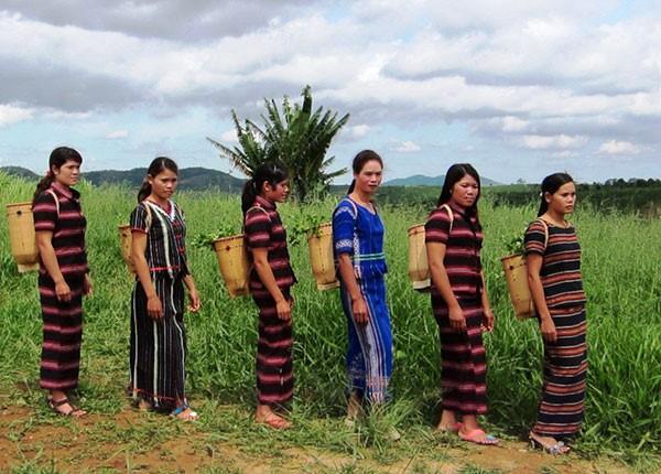 Kerajinan anyam- menganyam tradisional dari warga etnis minoritas Pa Ko - ảnh 1