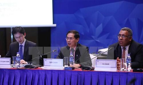 SOM 3: Vietnam dengan gagasan mengenai perkembangan mencakup di bidang ekonomi, keuangan, sosial - ảnh 1