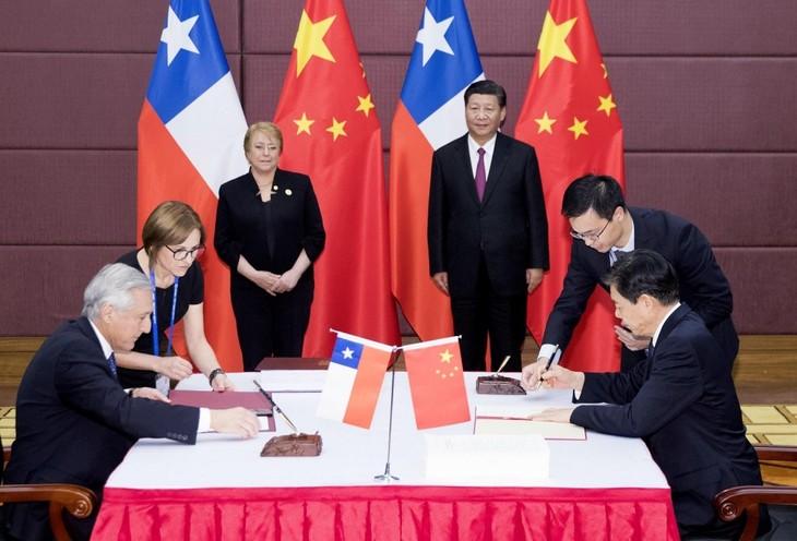 Tiongkok dan Cile menaikkan tingkat Permufakatan Perdagangan Bebas Bilateral - ảnh 1