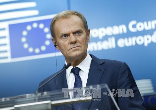 Uni Eropa menilai ada kemungkinan mencapai permufakatan tentang Brexit pada Desember mendatang - ảnh 1