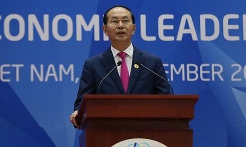 Suksesnya Tahun APEC Vietnam 2017  dan posisi Vietnam  - ảnh 1