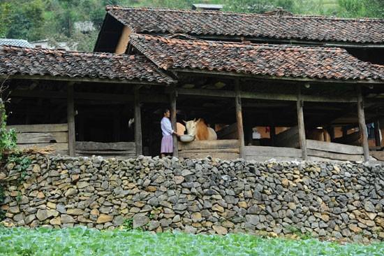 Bangunan  perumahan milik orang Mong - ảnh 1