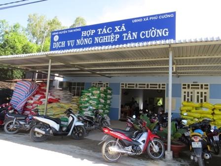 Memperkenalkan sepintas lintas tentang pola koperasi di Vietnam - ảnh 1
