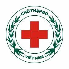 Menerapkan teknologi informasi dalam mengelola musibah di  Vietnam - ảnh 1