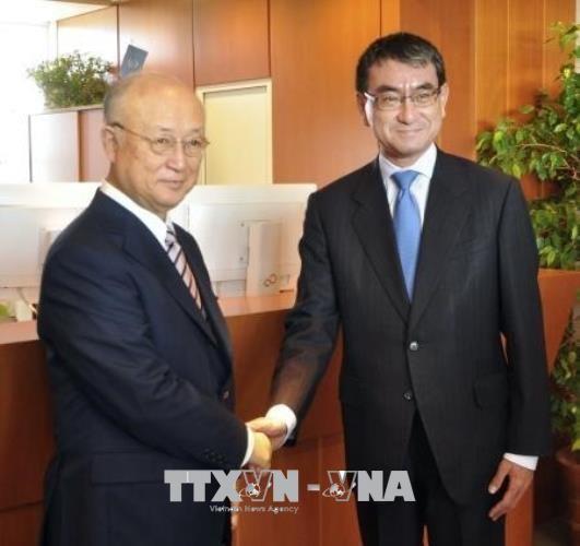 Jepang bersedia memberikan bantuan kepada IAEA untuk mengawasi denuklirisasi di Semenanjung Korea - ảnh 1