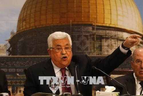 Palestina mencela Undang-Undang Negara Bangsa Yahudi dari Israel - ảnh 1