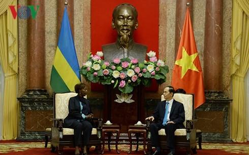 Presiden Tran Dai Quang menerima Menlu Rwanda dan Menlu Guinea - ảnh 1
