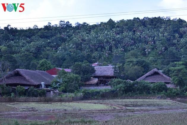 Pola wisata homestay turut memperbaiki kehidupan warga etnis Tay di Propinsi Ha Giang - ảnh 1