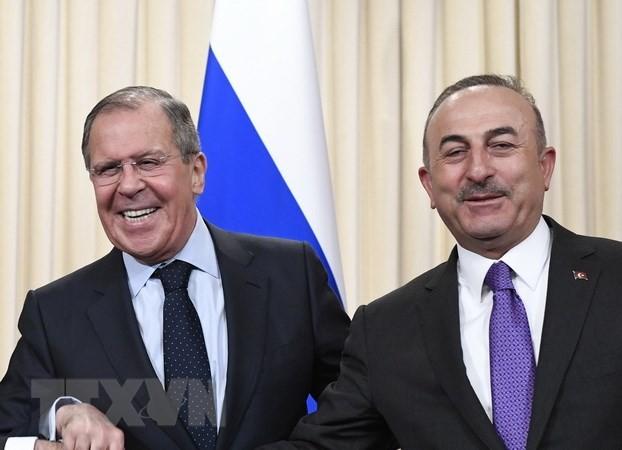 Rusia dan Turki berkomitmen akan mendorong hubungan kemitraan strategis - ảnh 1