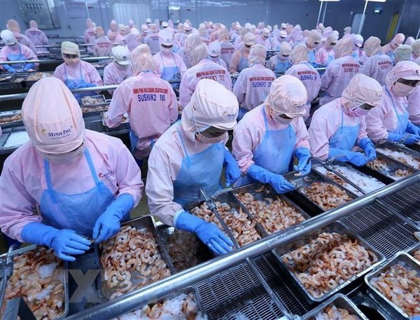 Badan usaha Vietnam perlu menguasai peluang untuk masuk pasar Afrika - ảnh 1