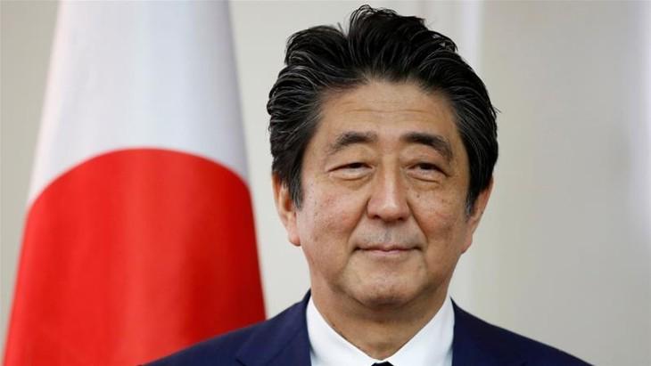 Forum Ekonomi Ketimuran: Jepang melakukan dialog-dialog bilateral tingkat tinggi - ảnh 1