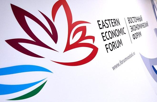 Forum Ekonomi Ketimuran kali ke-4 dibuka - ảnh 1