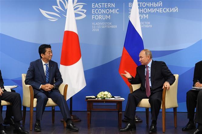 Pemimpin Rusia dan Jepang berbahas tentang program ekonomi bersama di pulau-pulau yang dipersengketakan - ảnh 1