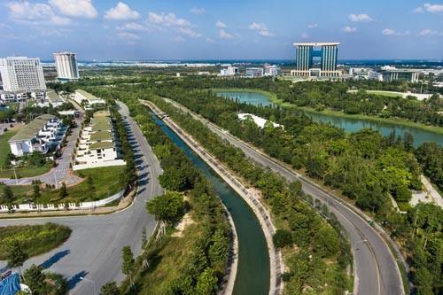 スマートシティの建設に取り組むビンズオン省 - ảnh 1