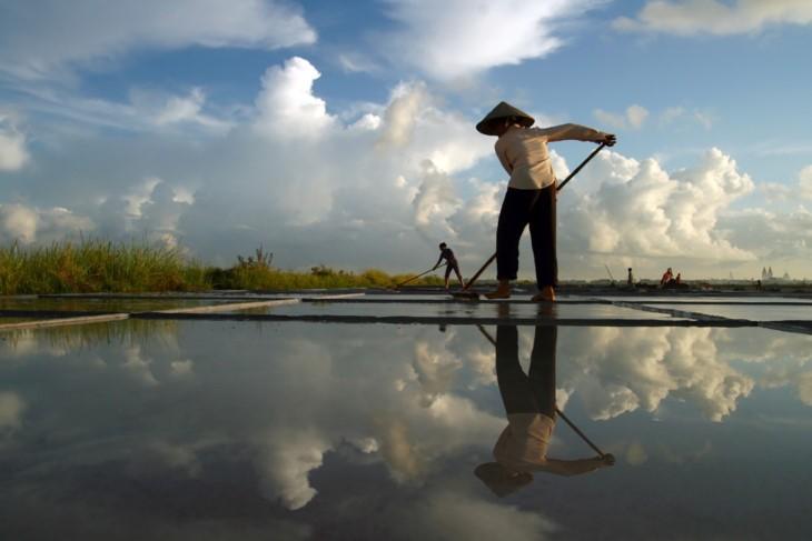 Memandangi kecantikan wanita Vietnam ketika sedang bekerja - ảnh 5
