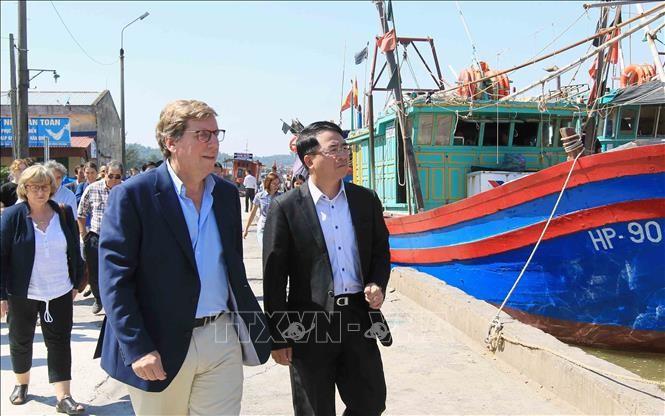Komisi Perikanan Parlemen Eropa melakukan temu kerja di Kota Hai Phong - ảnh 1