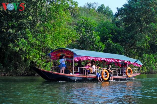 Pulau teh Thanh Chuong menyerap kedatangan wisatawan sehubungan dengan Hari Raya Tet - ảnh 3