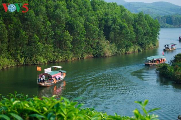 Pulau teh Thanh Chuong menyerap kedatangan wisatawan sehubungan dengan Hari Raya Tet - ảnh 5