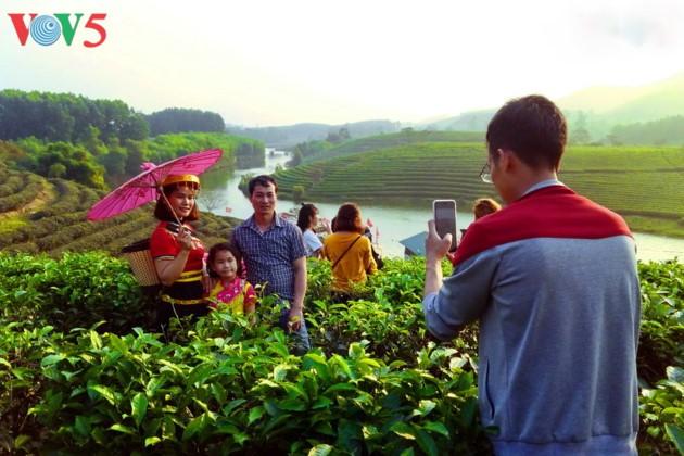 Pulau teh Thanh Chuong menyerap kedatangan wisatawan sehubungan dengan Hari Raya Tet - ảnh 12