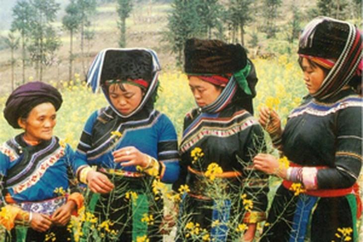 Etnis minoritas Co Lao - ảnh 1