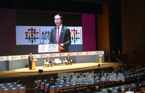APEC 2017 confirms Vietnam's stature  - ảnh 1