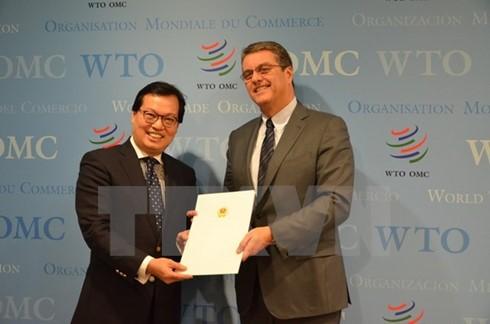 Vietnamese Ambassador presents credentials to WTO Director General  - ảnh 1