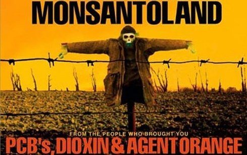 Monsanto case sets massive precedent for US chemical companies paying compensation   - ảnh 1