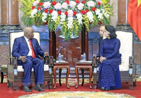 Acting President receives former Mozambican President - ảnh 1