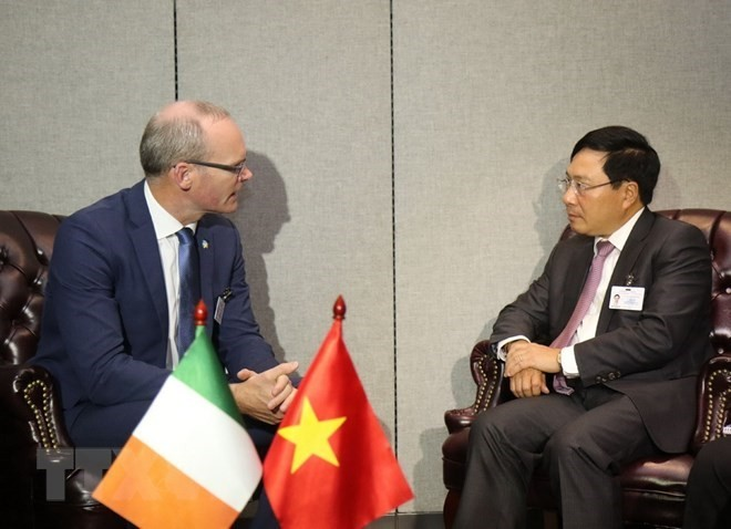 Deputy PM holds bilateral meetings on sidelines of UN General Assembly session - ảnh 1