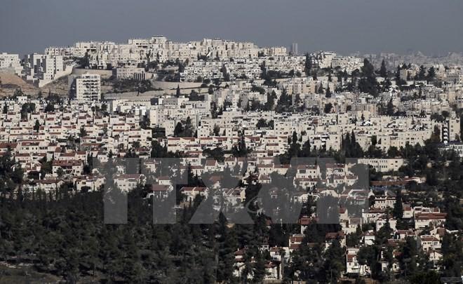 巴勒斯坦要求国际干预以色列扩建犹太人定居点活动   - ảnh 1