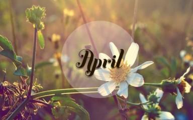 四月感悟人生 - ảnh 1