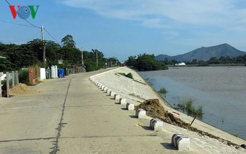 越南农业生产适应气候变化 - ảnh 1