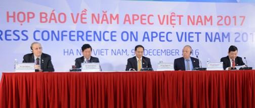 2017年亚太经合组织系列会议:越南积极创新融入国际 - ảnh 1