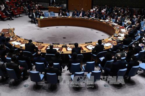 联合国安理会通过有关反恐的决议 - ảnh 1