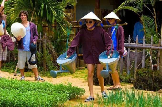 越南有关方面青年体验旅游大赛   - ảnh 1