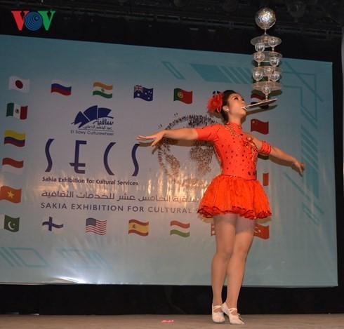 越南参加埃及开罗萨奇亚国际文化节   - ảnh 1
