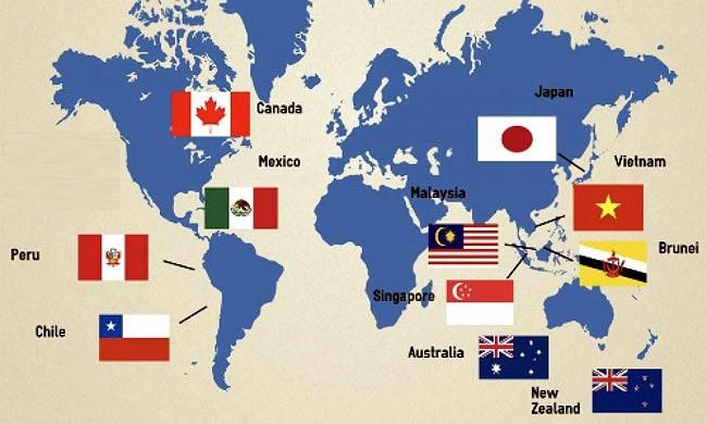 《全面且先进的跨太平洋伙伴关系协定》——全球贸易的助推力 - ảnh 1