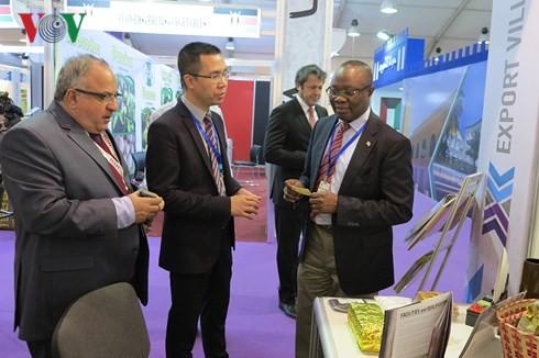 越南参加第51届埃及(开罗)国际贸易博览会  - ảnh 1
