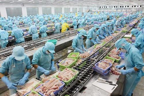 美国《全球政策》杂志:越南解决IUU问题的努力可成为东盟各国的典范   - ảnh 1