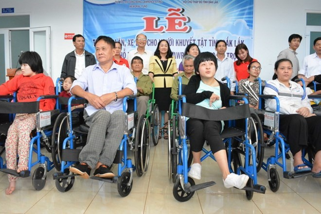 越南促进和保障残疾人权利 - ảnh 1