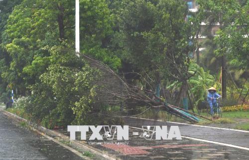 越南慰问遭受台风山神影响的中国灾民 - ảnh 1