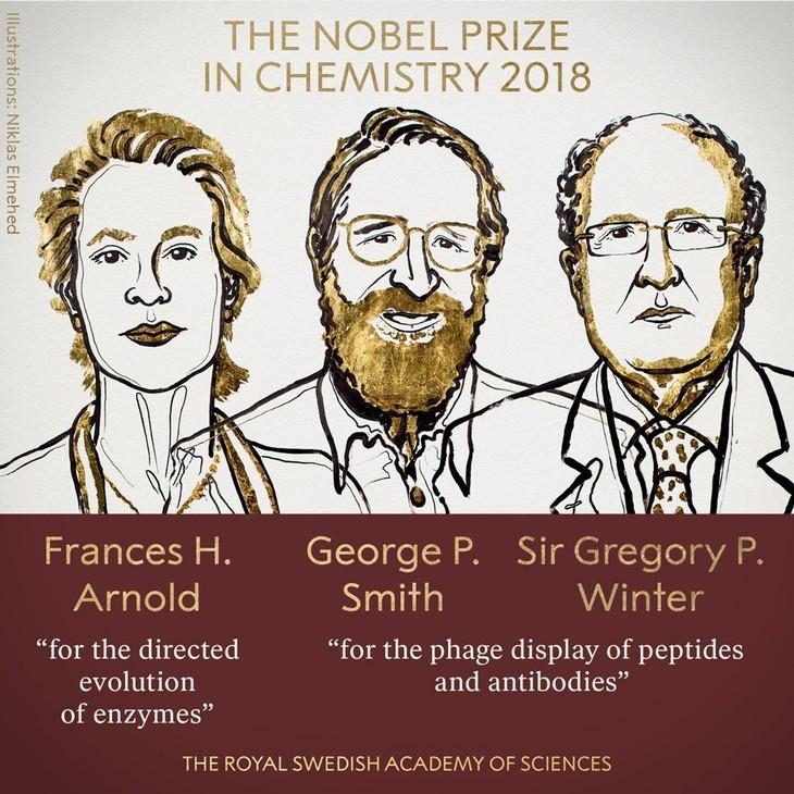 2018年诺贝尔化学奖授予美国和英国科学家 - ảnh 1