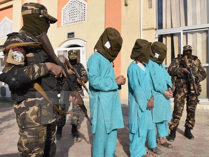 阿富汗政府军击毙一名塔利班高级指挥官 - ảnh 1