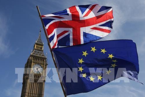英国脱欧问题:英国首相努力挽救与欧盟达成的脱欧协议草案 - ảnh 1