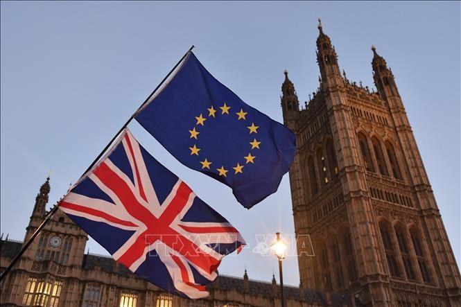 英国政府强调将如期举行二次公投 - ảnh 1